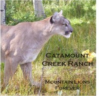 mountain lion sanctuary